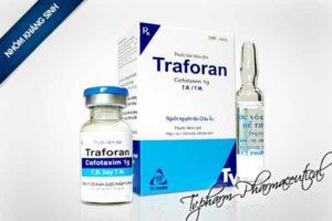 Thuốc traforan là loại thuốc gì? chữa trị bệnh gì? giá bao lăm tiền?